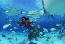 Travel Contest of the Week: PADI Great Barrier Reef Giveaway