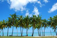 Saint Lucia Beach Getaway from $97/Night