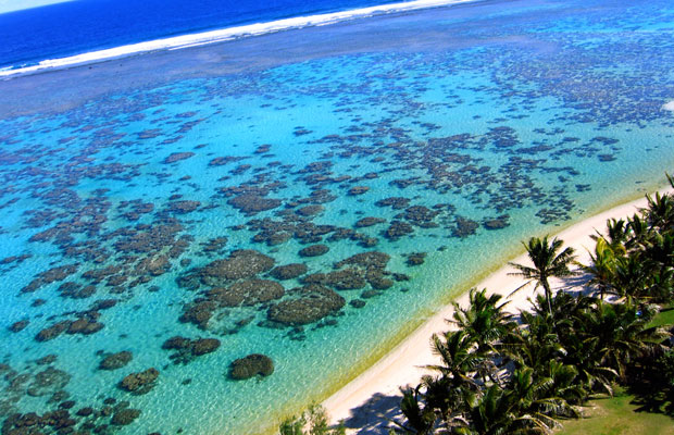 New Year Flight Sales: Reduced Fares on Air New Zealand & Emirates