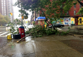 Sandy Travel Update: Relief Efforts, NYC Marathon, and National Parks