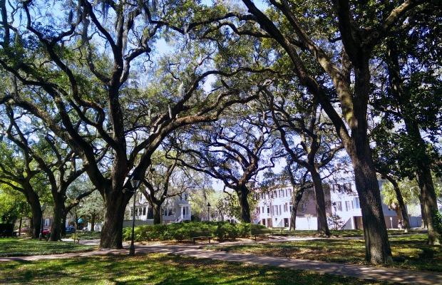 Where To Eat Like a Local in Savannah, GA