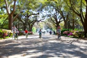 Savannah with Kids: Go Green, Save Green
