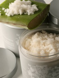 Smooth Operators: Sugar, Salt, and Scrubs Galore