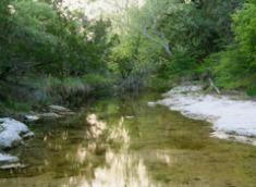 Plush Texas Hill Country Eco-Retreat