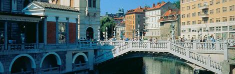 Slovenia Spotlight