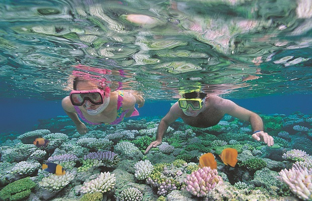Exploring the Great Barrier Reef on the Cheap