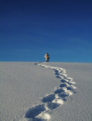 Snowshoeing: An Easy, Affordable Alternative to Skiing