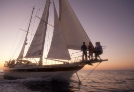 Luxury Sailing Adventure Launches in South Australia
