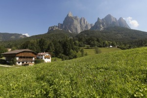 Mountain Biking and Farm Stays in Northern Italy