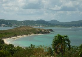 St. Croix for Foodies