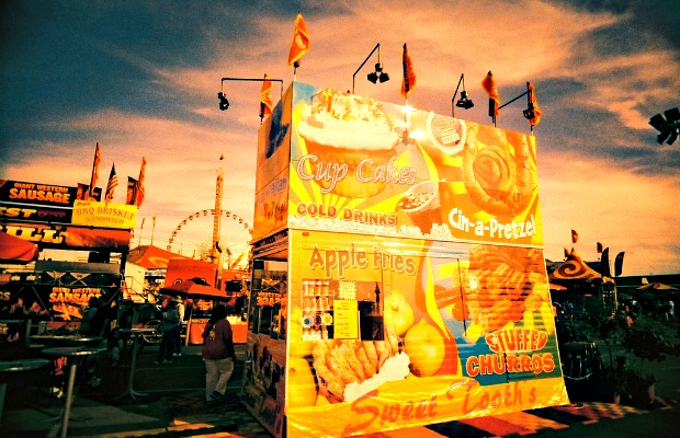 Summer State Fairs: 10 Quirky Attractions to Seek Out