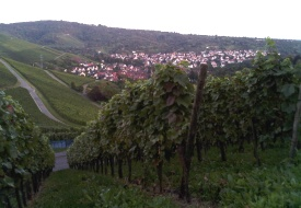 Wining and Dining in Stuttgart and Beyond