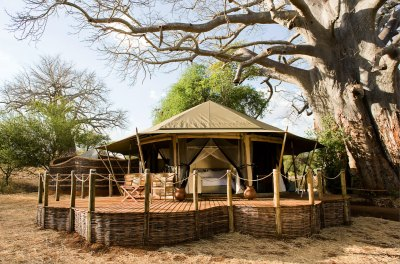 Pay for 3 Nights and Stay for 4 on a Tanzanian Safari