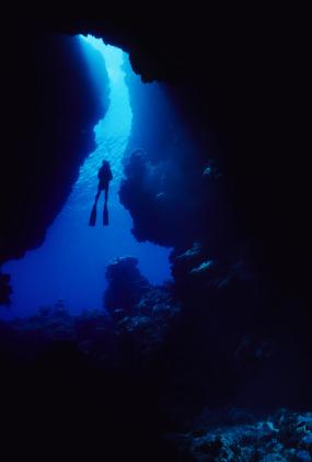 Tec Diving: A Deeply Adventurous Twist on a Perennial Favorite