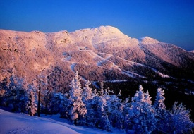 Ski For Free at Stowe's Topnotch Resort