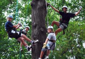 Connecticut Tree-Climbing Class Puts Fresh Twist on Family Fall Foliage Getaway