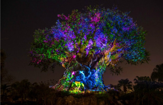 Why This Summer Could Be the Best Yet at Walt Disney World