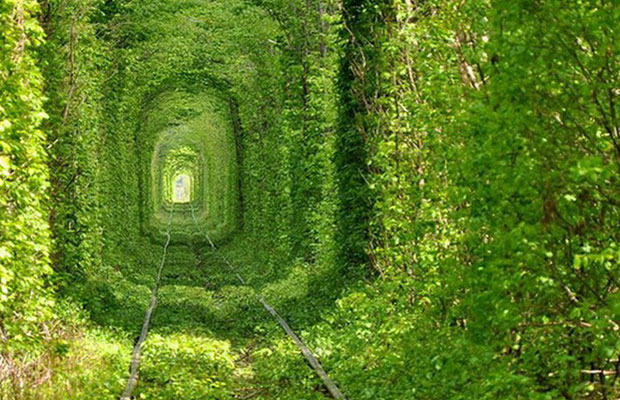 Inspired Travel: The Tunnel of Love