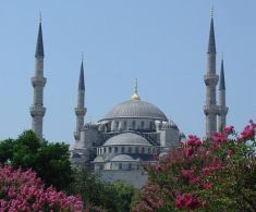 Istanbul 6-Day Trip W/Air, Hotel & Breakfast from $739