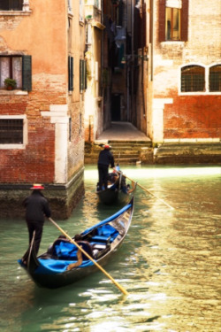Venice at Your Fingertips