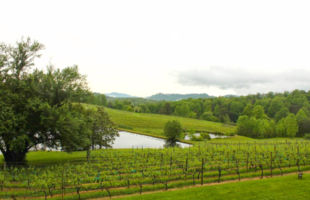 A Winery Weekend in the North Georgia Mountains