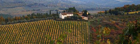 Top 10 Wine Regions
