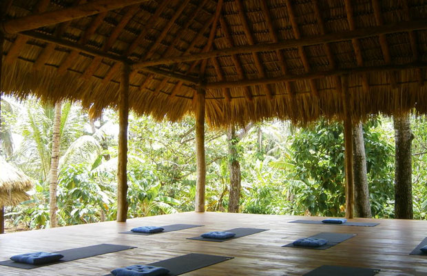 Save or Splurge: 8 Yoga Retreats for Winter Relaxation