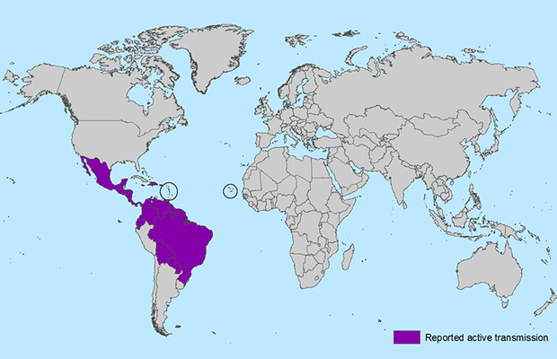 Zika Virus: 3 Must-Know Tips, Plus Advice for Travel Planning